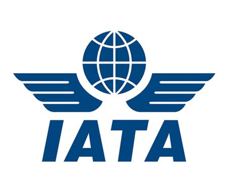 IATA logo for case study